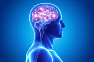 Как использовать возможности мозга