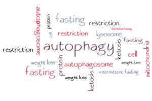 Аутофагия и интервальное голодание